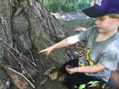 A young boy with light skin, a grey shirt, and a purple hat, pointing at sticks and bark at the base of a tree.