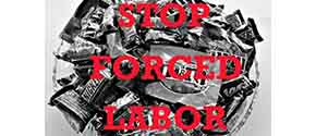 Stop Forced Labor