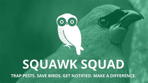 Squawk Squad Education Campaign