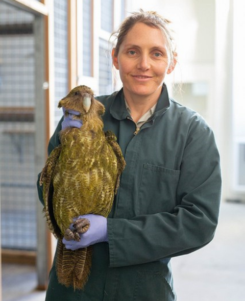 Kylie Martin, Auckland Zoo staff, with Kōmaru, credit Auckland Zoo