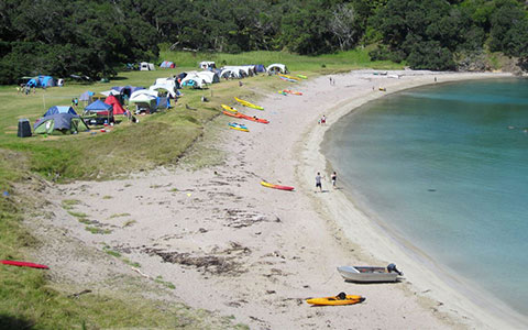 Waikahoa Bay Campsite.