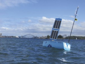 Bruce the Bluebottle USV from Ocius Technology on Sydney Harbour.
