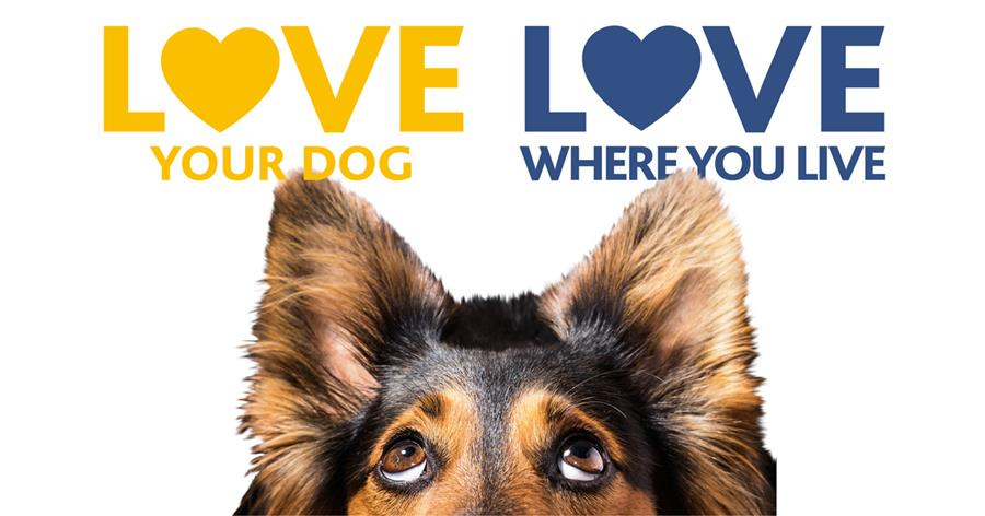 Love your dog love where you live