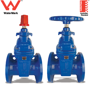 WaterMark Approved RSGV-AS Series Gate Valves