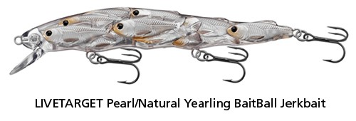 Yearling BaitBall