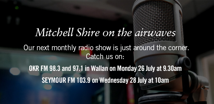 Mitchell Shire on the airwaves. Catch us on: OKRFM in Wallan on Monday 26 July at 9.30am and Seymour FM on Wednesday 28 July at 10am.