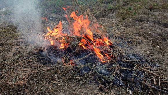 Burning some sticks