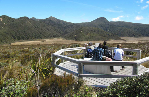 Viewing platform on the track to Ahukawakawa Swamp