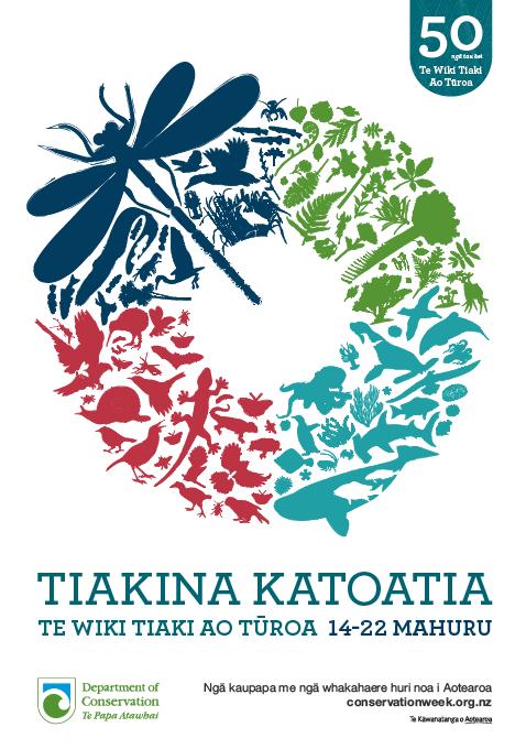 Dragonfly Poster in Te Reo Maori