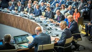 NATO members will be happy to see Trump back in Washington.  NATO via Twitter