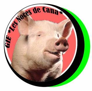 le logo des noces de Cana