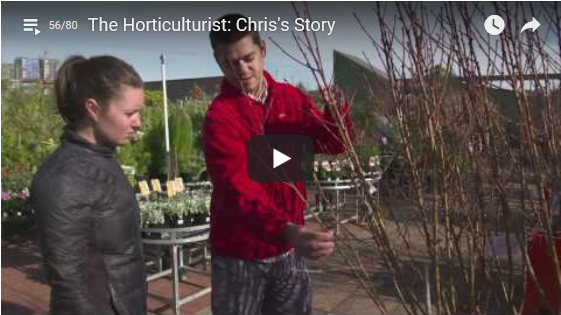 Pictured: Chris Henbery touching a tree and explaining his passion for horticulture