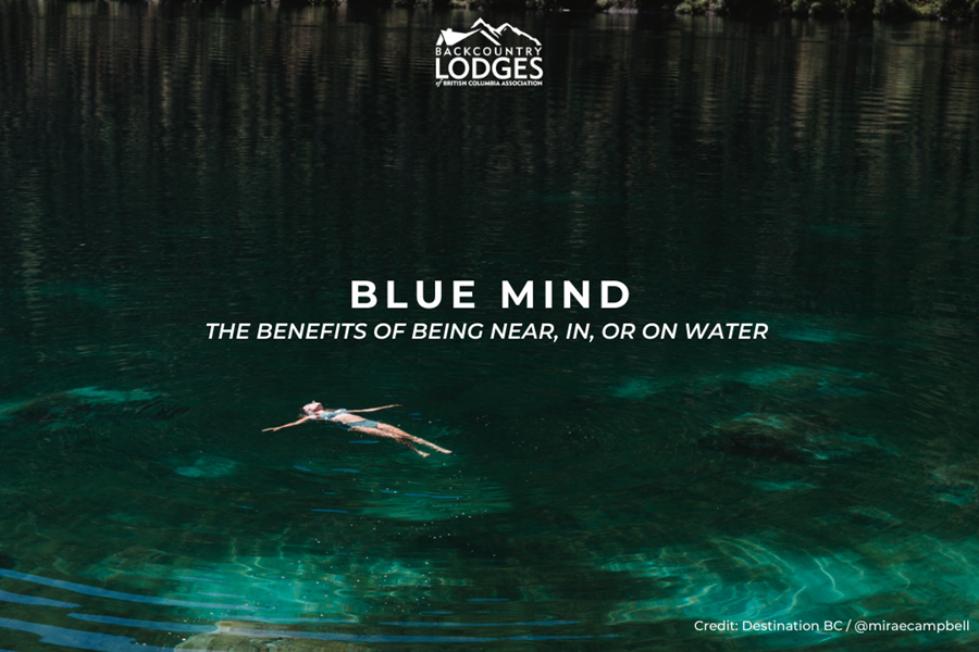 Blue Mind: The Benefits of Being Near, In, or On Water