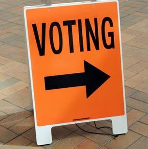 Mt Herbert by-election