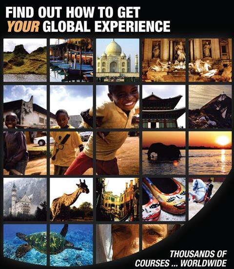 How will you get your global experience?