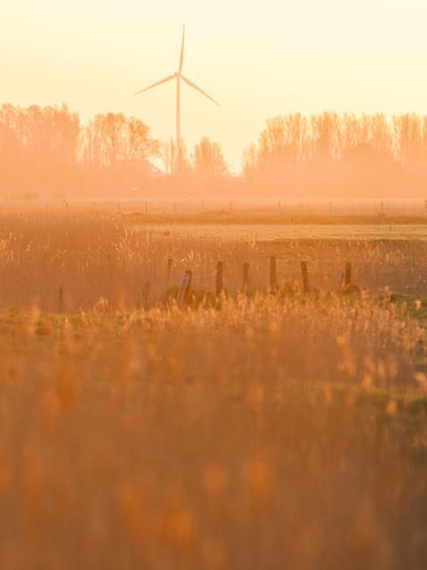 Windmolenpark Melle: Natuurpunt, Energent en Eneco in de bres voor vleermuizen