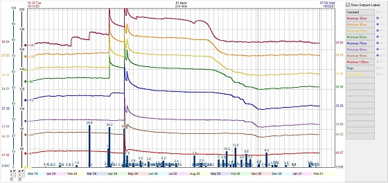 Individual sensor trace soil moisture graph showing moisture use coming from 60-70cm in October.