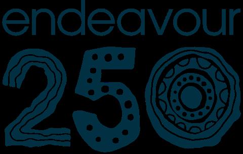 Endeavour 250 Logo