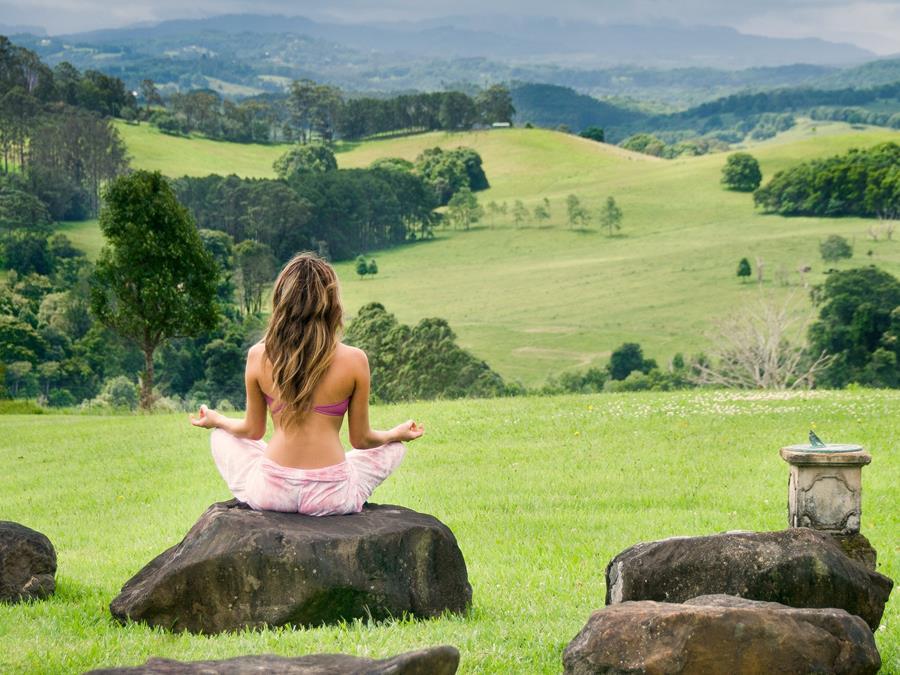 Wellness Experiences NSW Greenhouse Retreat