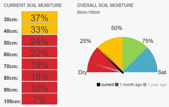 Brim speedo moisture currently 24%