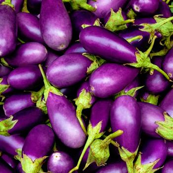 Mast O Bademjan, Persian Eggplant Dip