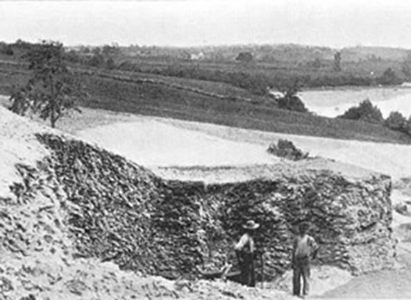Image of Whaleback Shell Heap in Maine