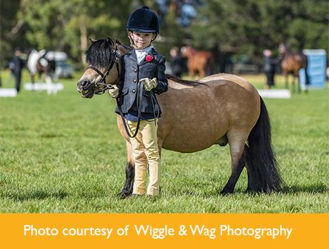 Photo courtesy of Wiggle & Wag Photography