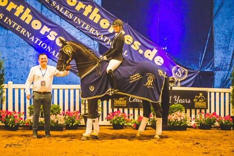 The Winner of PSI Dressage & Jumping with the Stars 2019 7 YO Young Dressage Horse was Bluefields Doris Day (Desperados x Florencio) & Alexis Hellyer 📷 Geoff McLean