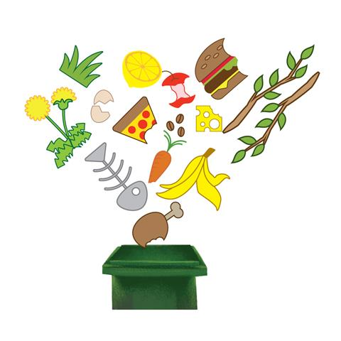 Food waste going into green bin