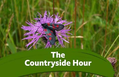 The Countryside Hour