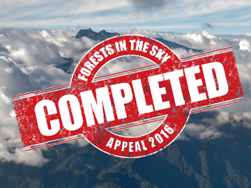 Forests in the Sky appeal complete. © WLT.
