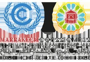 UNFCCC Momentum for Change Award