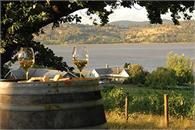 Ninth Island Vineyard - Tourism Tasmania and Michael Walters