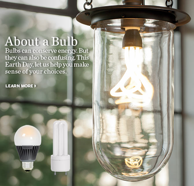 About Bulbs