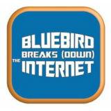 Bluebird Breaks Down the Internet