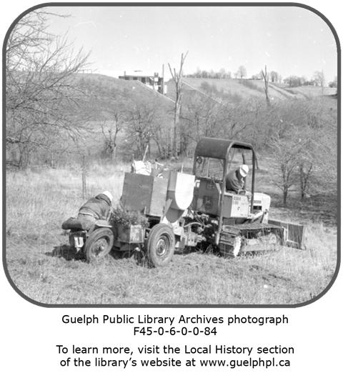 Library Archives photograph of a tractor and people planting trees.
