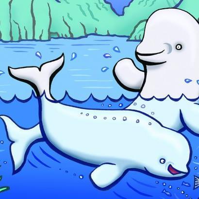 Cartoon belugas
