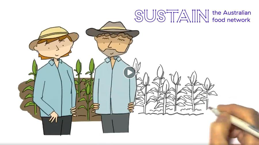 A sketch video explaining food systems and the role that Sustain plays in helping to build them.