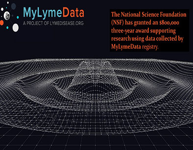 NSF Big Data Grant
