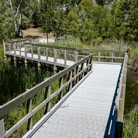 Boardwalk in wetland made of recycled content