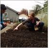 Urban farming expands onto school grounds